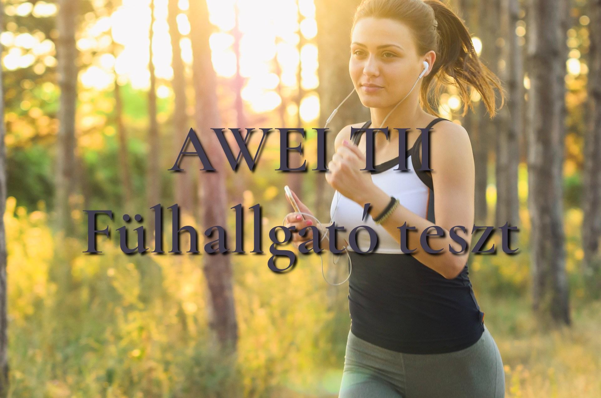 AWEI T11 Bluetooth fülhallgató