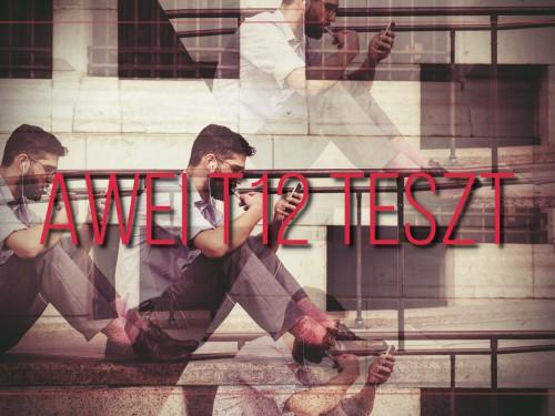 AWEI T12 TESZT